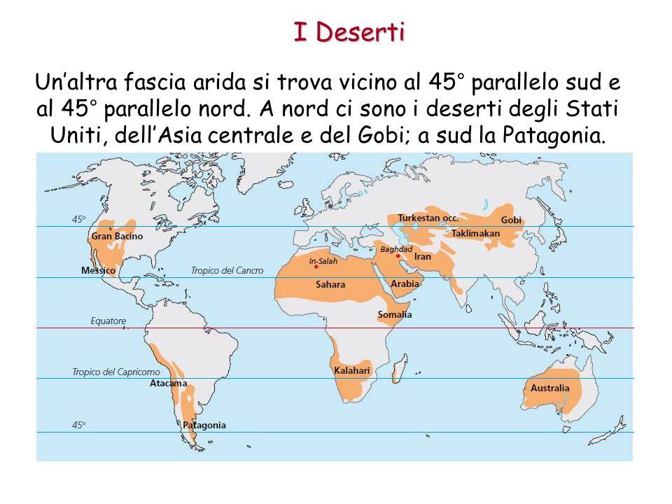 I Deserti Unaltra fascia arida si trova vicino al 45° parallelo sud e al 45° parallelo nord. A nord ci sono i deserti degli Stati Uniti, dellAsia cent