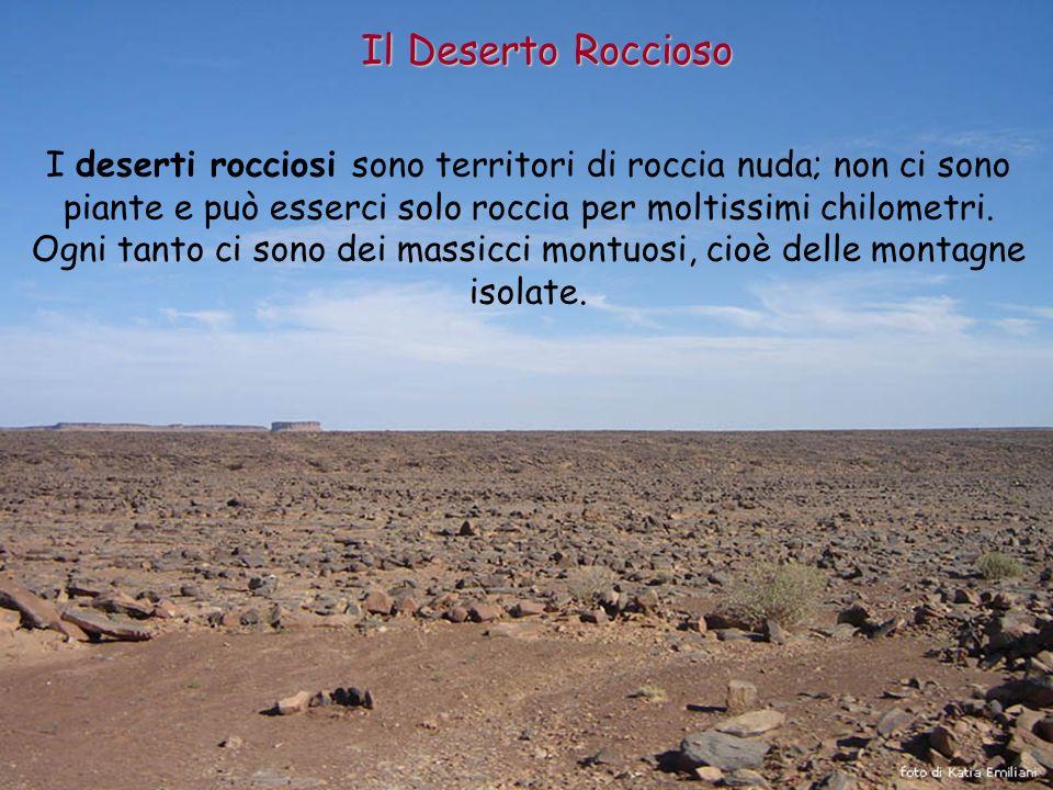 Il Deserto Roccioso I deserti rocciosi sono territori di roccia nuda; non ci sono piante e può esserci solo roccia per moltissimi chilometri. Ogni tan