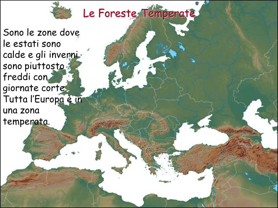 Nei territori vicini al 45° parallelo ci sono quattro stagioni; lestate è calda e gli inverni non sono tanto freddi.