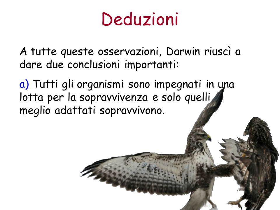 Deduzioni A tutte queste osservazioni, Darwin riuscì a dare due conclusioni importanti: a) Tutti gli organismi sono impegnati in una lotta per la sopr