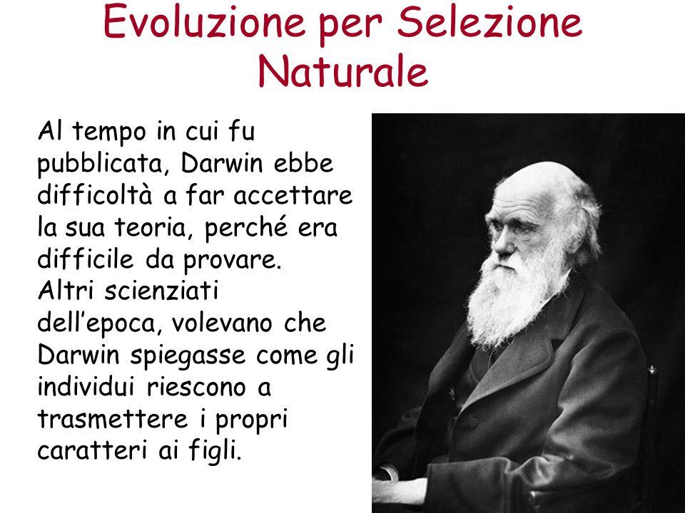 Evoluzione per Selezione Naturale Al tempo in cui fu pubblicata, Darwin ebbe difficoltà a far accettare la sua teoria, perché era difficile da provare