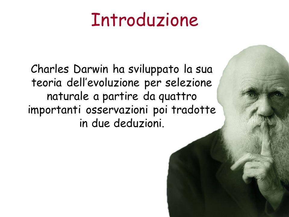 Introduzione Charles Darwin ha sviluppato la sua teoria dellevoluzione per selezione naturale a partire da quattro importanti osservazioni poi tradott