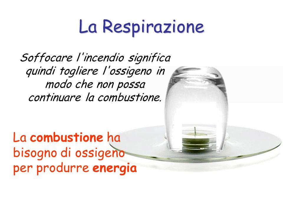 La Respirazione Soffocare l'incendio significa quindi togliere l'ossigeno in modo che non possa continuare la combustione. La combustione ha bisogno d