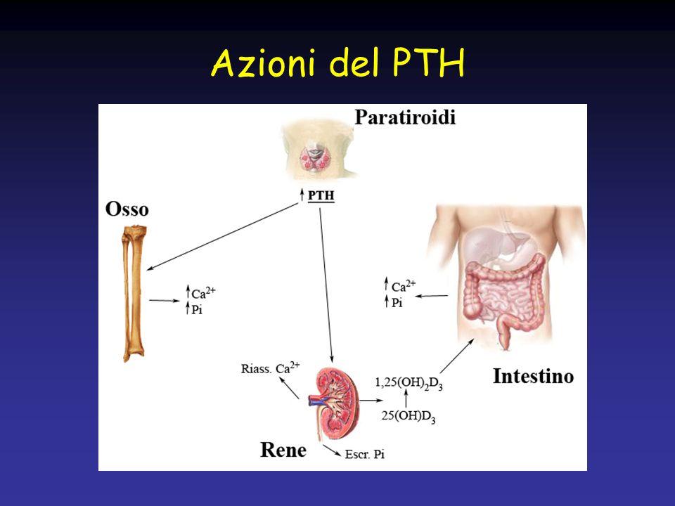 Ruolo della Vitamina D in età evolutiva Una deficienza di Vit.