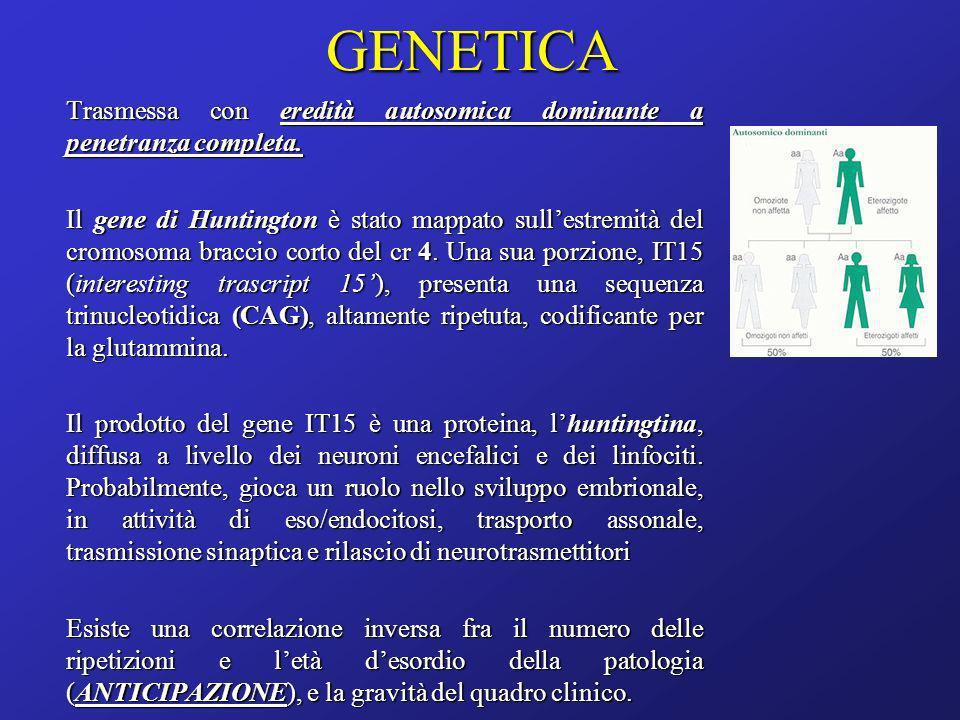 GENETICA Trasmessa con eredità autosomica dominante a penetranza completa. Il gene di Huntington è stato mappato sullestremità del cromosoma braccio c