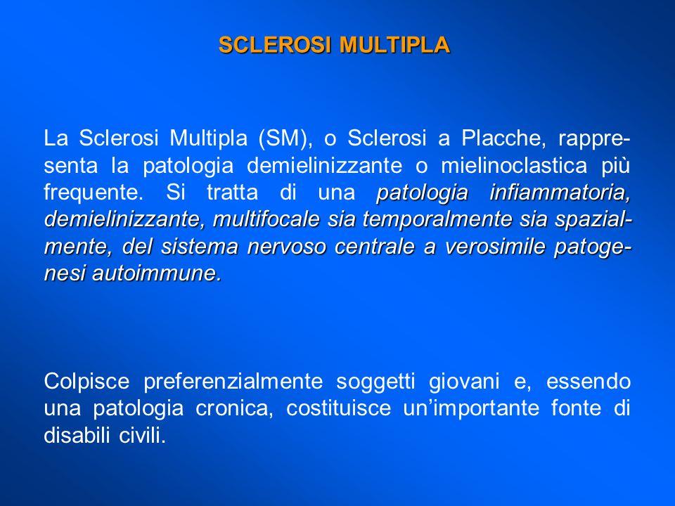 patologia infiammatoria, demielinizzante, multifocale sia temporalmente sia spazial- mente, del sistema nervoso centrale a verosimile patoge- nesi aut