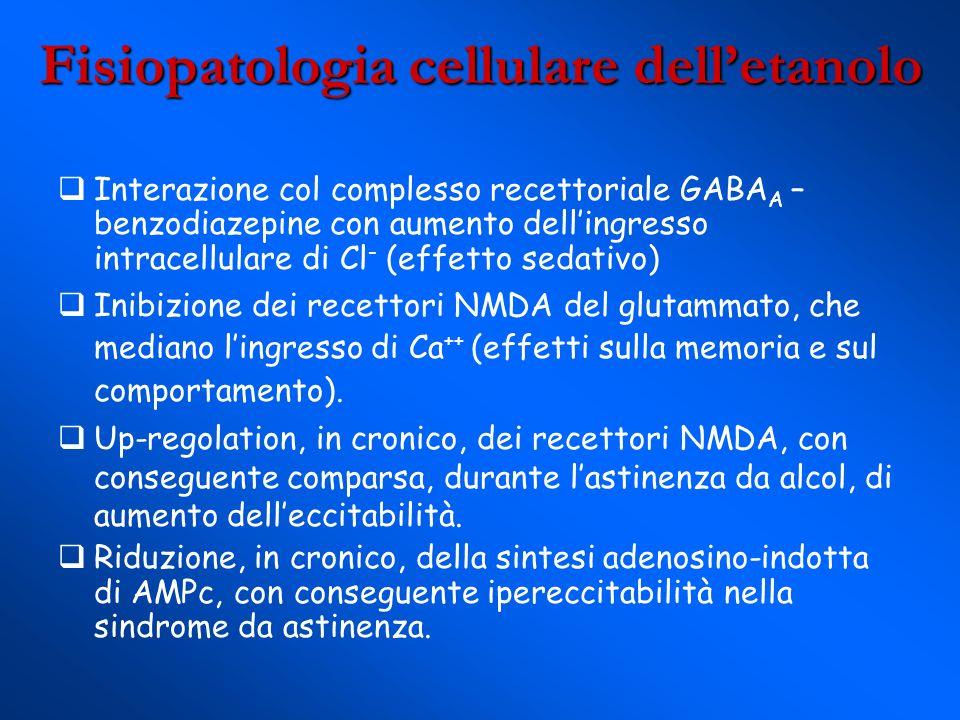 Fisiopatologia cellulare delletanolo Interazione col complesso recettoriale GABA A – benzodiazepine con aumento dellingresso intracellulare di Cl - (effetto sedativo) Inibizione dei recettori NMDA del glutammato, che mediano lingresso di Ca ++ (effetti sulla memoria e sul comportamento).