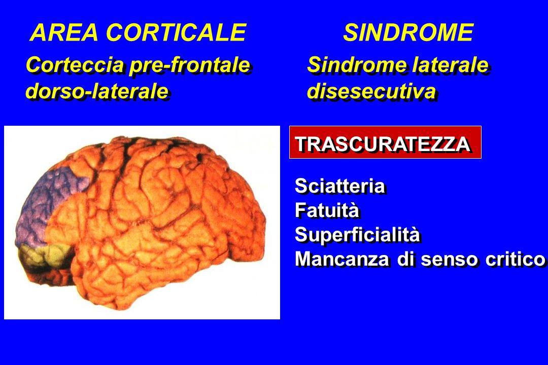 Corteccia pre-frontale dorso-laterale Corteccia pre-frontale dorso-laterale Sindrome laterale disesecutiva Sindrome laterale disesecutiva AREA CORTICA