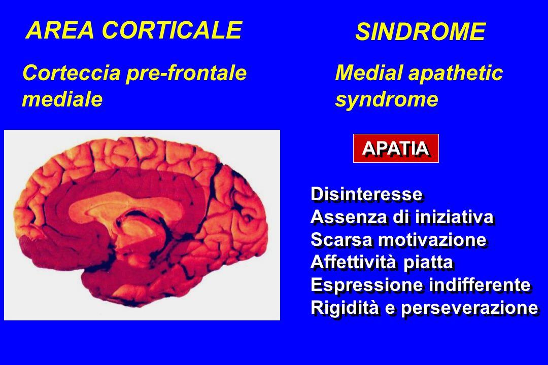 AREA CORTICALE SINDROME Medial apathetic syndrome Corteccia pre-frontale mediale APATIA Disinteresse Assenza di iniziativa Scarsa motivazione Affettiv