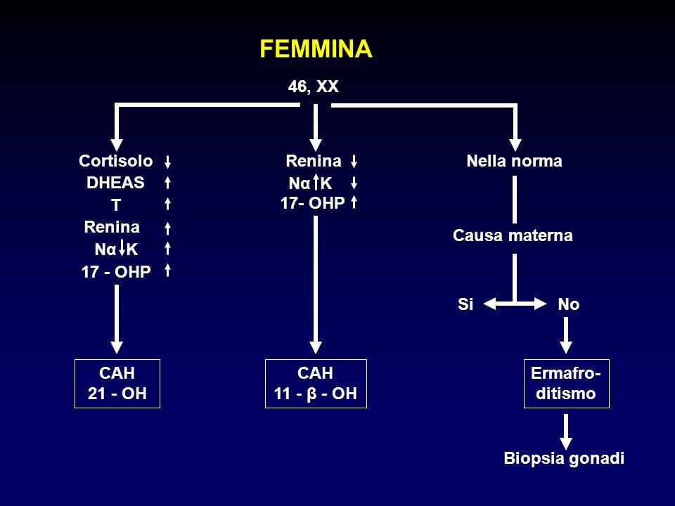 INQUADRAMENTO DIAGNOSTICO MASCHIO 46, XY Cortisolo T Nα K CAH 3 - β - OL T LH Ipoplasia cellule di Leydig CAH 17 - OH Cortisolo DHEAS T Renina PA Nα K Renina Nella norma Biopsia gonadica T DHT Ermafrodismo o disgesia gonadica Deficit 5α Reduttasi
