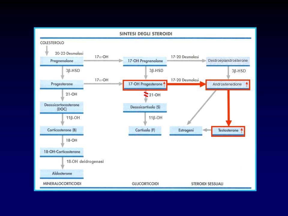 SAG DA DEFICIT DI 21-OH Forma Virilizzante Semplice Nella femmina lesposizione intrauterina ad elevati livelli di androgeni provoca la virilizzazione dei genitali esterni La neonata si presenta con un grado di virilizzazione variabile dallipertrofia clitoridea ad un quadro di pseudoermafroditismo femminile (Stadi di Prader 15) e con genitali interni del tutto normali La SAG da deficit di 21-OH è la causa più frequente di ambiguità genitale La paziente non trattata presenterà un progressivo aggravamento della virilizzazione e difficoltà (shock) ad affrontare le condizioni di stress