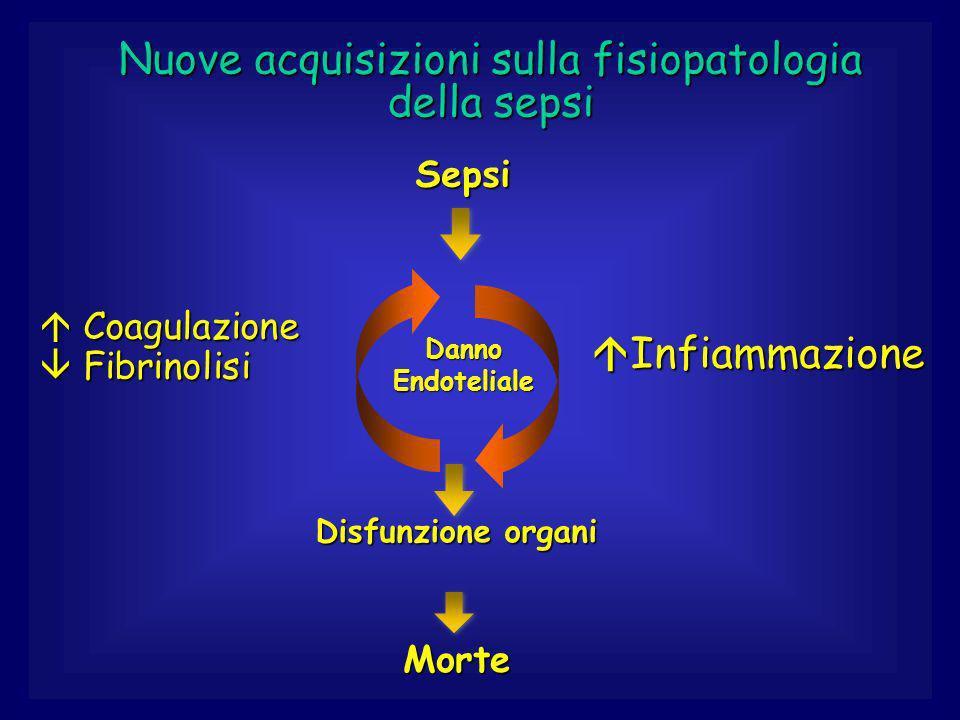 Nuove acquisizioni sulla fisiopatologia della sepsi Disfunzione organi Sepsi Coagulazione Fibrinolisi Coagulazione Fibrinolisi Infiammazione Infiammazione Danno Endoteliale Morte