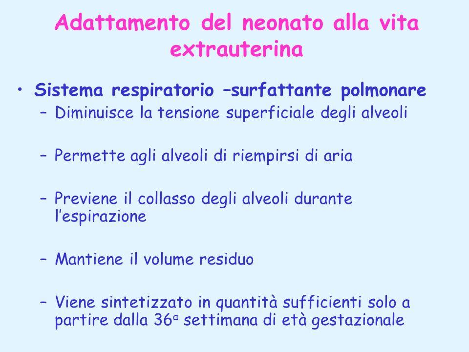 Adattamento del neonato alla vita extrauterina Sistema respiratorio –surfattante polmonare –Diminuisce la tensione superficiale degli alveoli –Permett