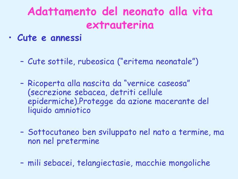 Adattamento del neonato alla vita extrauterina Cute e annessi –Cute sottile, rubeosica (eritema neonatale) –Ricoperta alla nascita da vernice caseosa