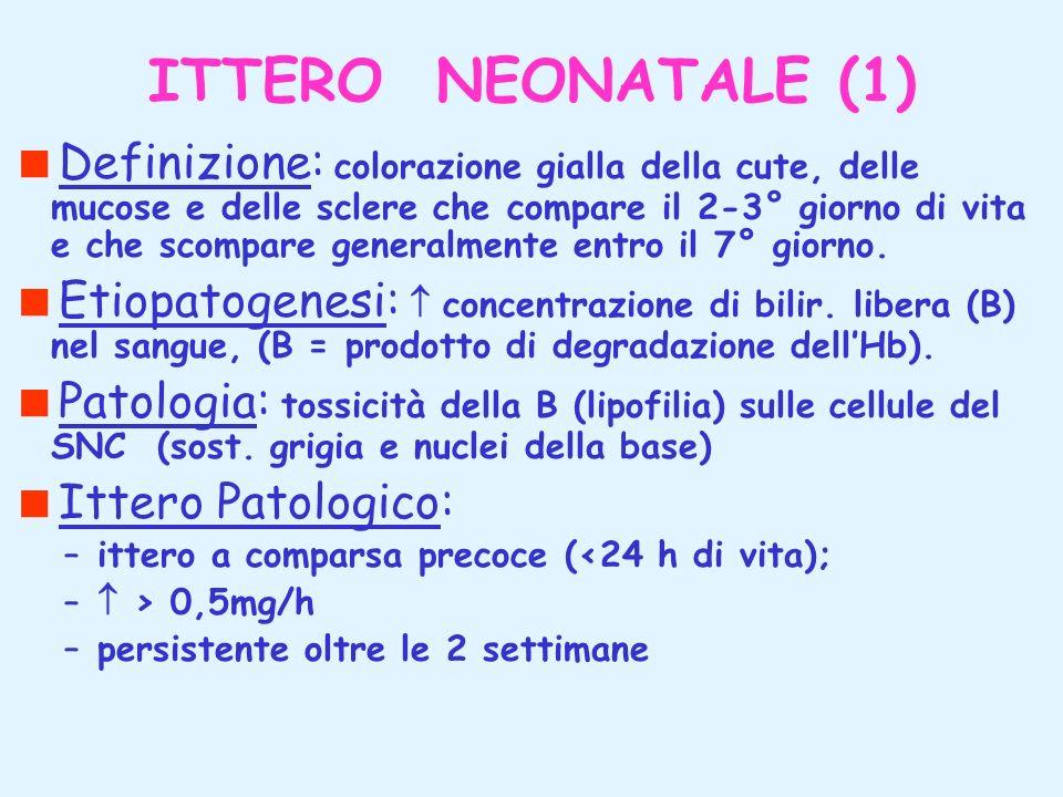 ITTERO NEONATALE (1) Definizione: colorazione gialla della cute, delle mucose e delle sclere che compare il 2-3° giorno di vita e che scompare general
