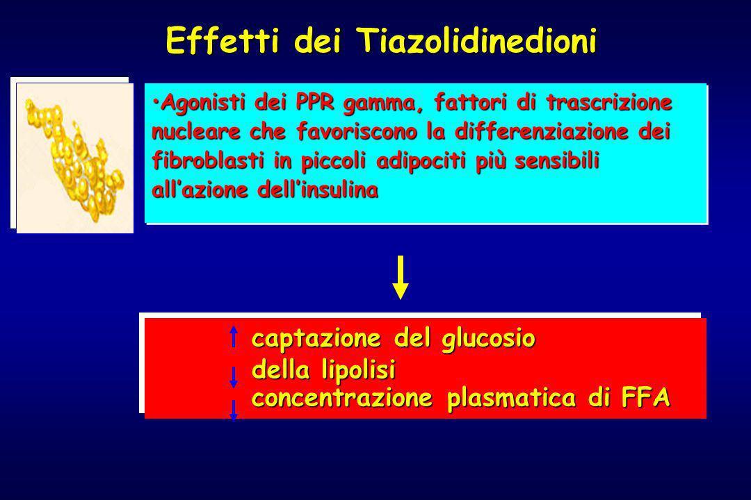 Effetti dei Tiazolidinedioni Agonisti dei PPR gamma, fattori di trascrizione nucleare che favoriscono la differenziazione dei fibroblasti in piccoli a