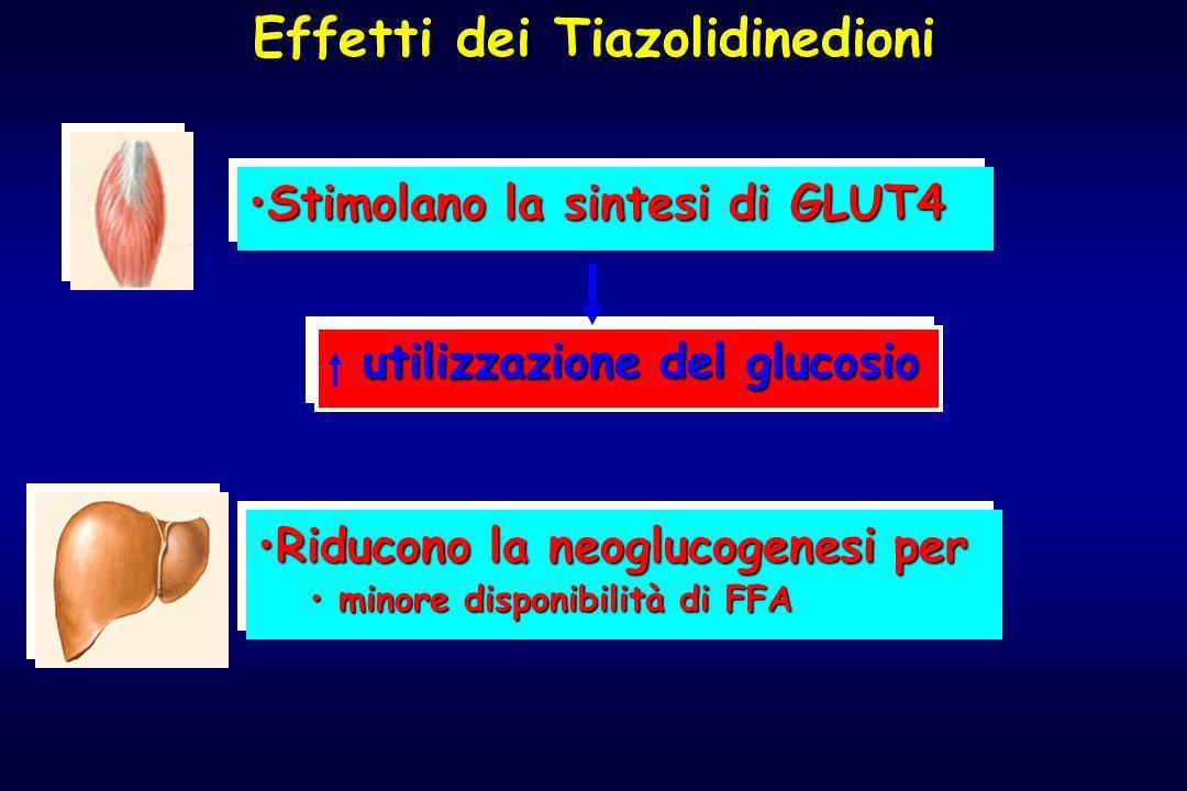 Effetti dei Tiazolidinedioni Stimolano la sintesi di GLUT4Stimolano la sintesi di GLUT4 utilizzazione del glucosio utilizzazione del glucosio Riducono