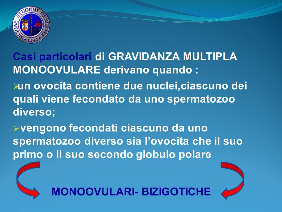 Casi particolari di GRAVIDANZA MULTIPLA MONOOVULARE derivano quando : un ovocita contiene due nuclei,ciascuno dei quali viene fecondato da uno spermat