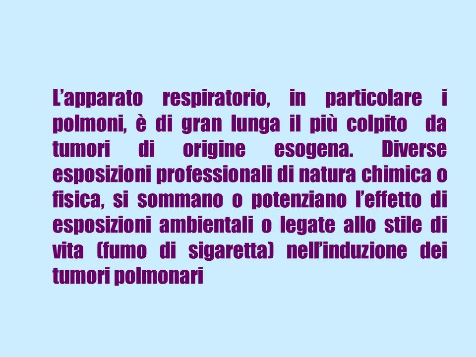 Lapparato respiratorio, in particolare i polmoni, è di gran lunga il più colpito da tumori di origine esogena. Diverse esposizioni professionali di na