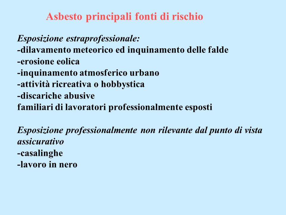 Asbesto principali fonti di rischio Esposizione estraprofessionale: -dilavamento meteorico ed inquinamento delle falde -erosione eolica -inquinamento