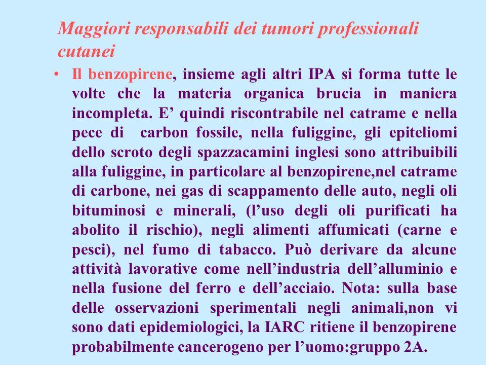 Maggiori responsabili dei tumori professionali cutanei Il benzopirene, insieme agli altri IPA si forma tutte le volte che la materia organica brucia i