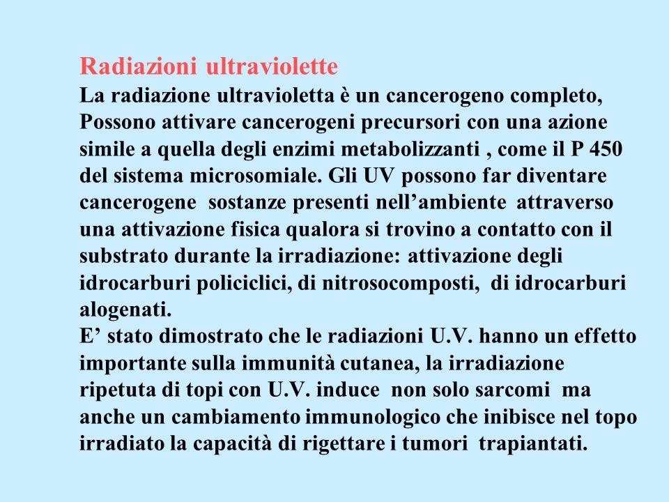 Radiazioni ultraviolette La radiazione ultravioletta è un cancerogeno completo, Possono attivare cancerogeni precursori con una azione simile a quella