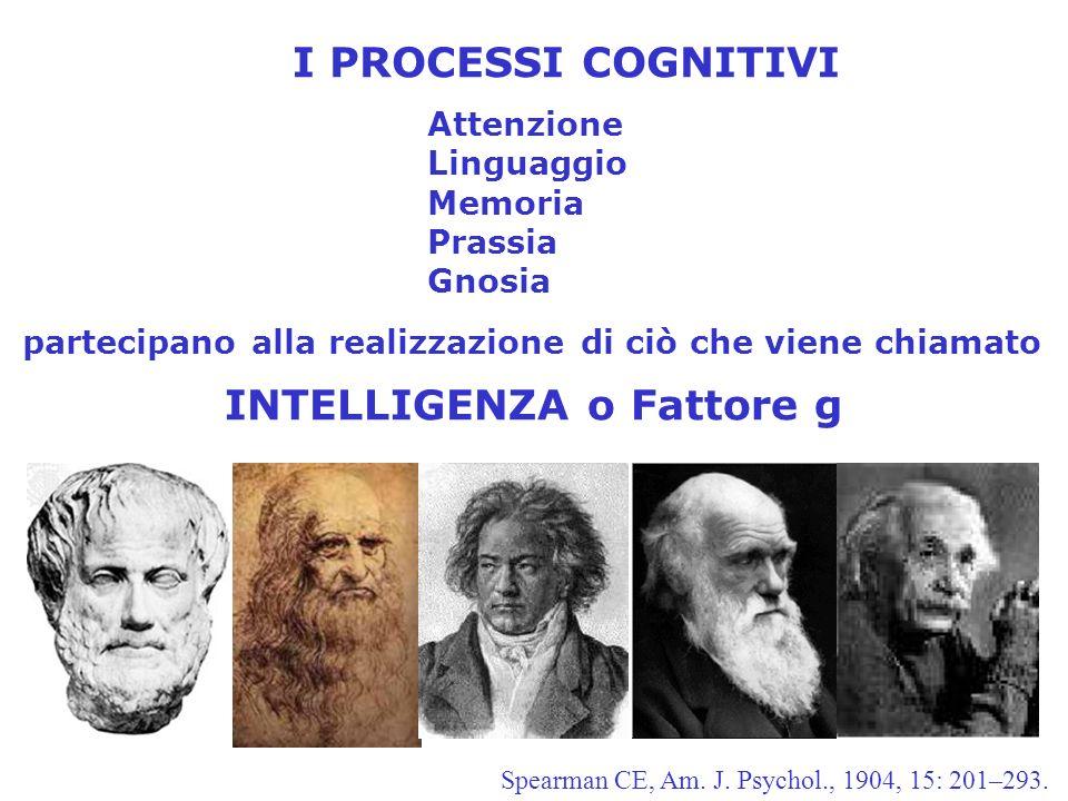 partecipano alla realizzazione di ciò che viene chiamato INTELLIGENZA o Fattore g I PROCESSI COGNITIVI Attenzione Linguaggio Memoria Prassia Gnosia Sp