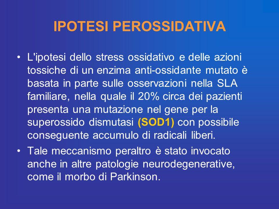IPOTESI PEROSSIDATIVA L'ipotesi dello stress ossidativo e delle azioni tossiche di un enzima anti-ossidante mutato è basata in parte sulle osservazion