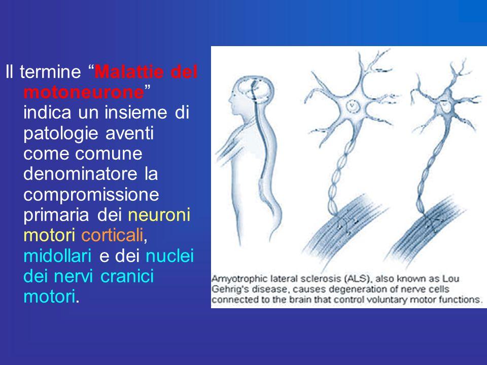 Il termine Malattie del motoneurone indica un insieme di patologie aventi come comune denominatore la compromissione primaria dei neuroni motori corti