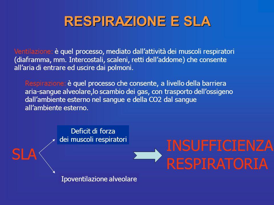 RESPIRAZIONE E SLA Ventilazione: è quel processo, mediato dallattività dei muscoli respiratori (diaframma, mm. Intercostali, scaleni, retti delladdome