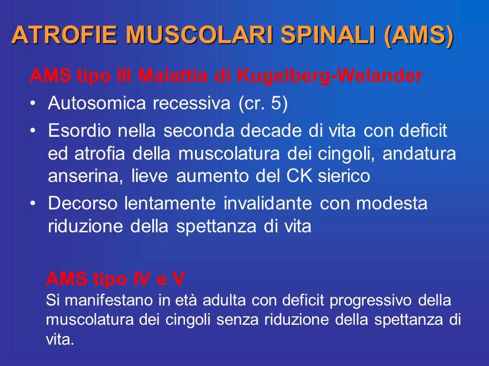 ATROFIE MUSCOLARI SPINALI (AMS) AMS tipo III Malattia di Kugelberg-Welander Autosomica recessiva (cr. 5) Esordio nella seconda decade di vita con defi