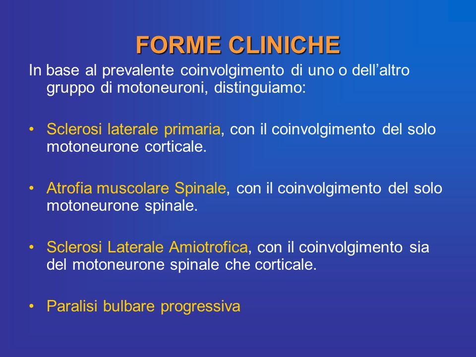 FORME CLINICHE In base al prevalente coinvolgimento di uno o dellaltro gruppo di motoneuroni, distinguiamo: Sclerosi laterale primaria, con il coinvol