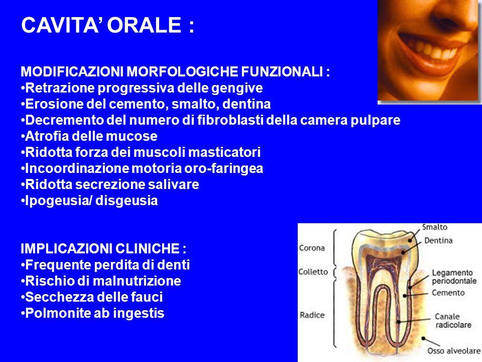 CAVITA ORALE : MODIFICAZIONI MORFOLOGICHE FUNZIONALI : Retrazione progressiva delle gengive Erosione del cemento, smalto, dentina Decremento del numer