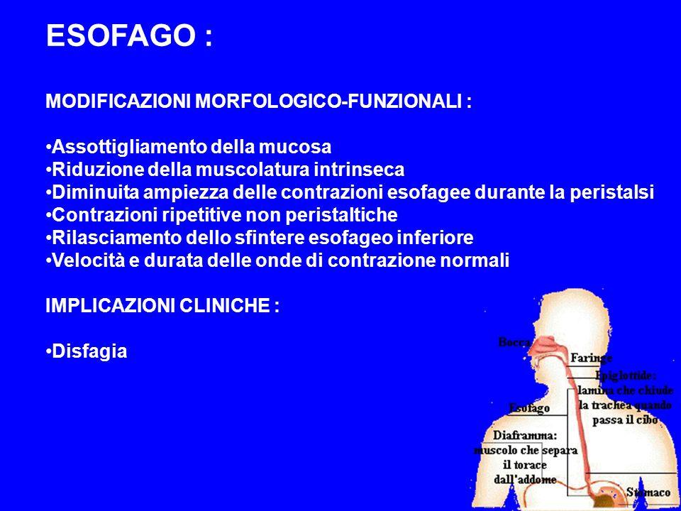ESOFAGO : MODIFICAZIONI MORFOLOGICO-FUNZIONALI : Assottigliamento della mucosa Riduzione della muscolatura intrinseca Diminuita ampiezza delle contraz