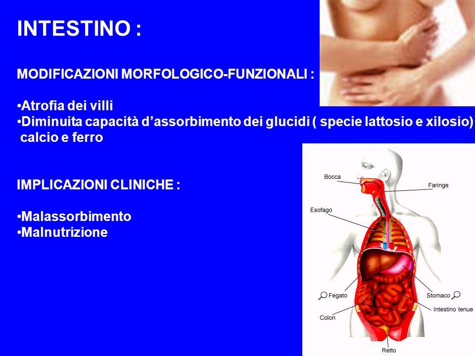 INTESTINO : MODIFICAZIONI MORFOLOGICO-FUNZIONALI : Atrofia dei villi Diminuita capacità dassorbimento dei glucidi ( specie lattosio e xilosio) calcio