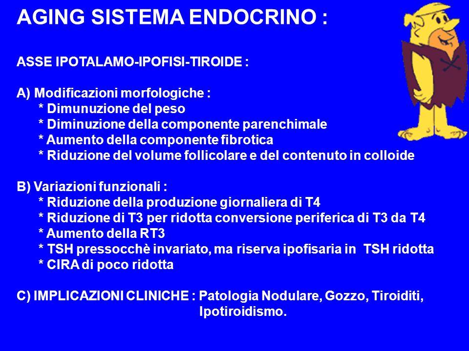 AGING SISTEMA ENDOCRINO : ASSE IPOTALAMO-IPOFISI-TIROIDE : A)Modificazioni morfologiche : * Dimunuzione del peso * Diminuzione della componente parenc