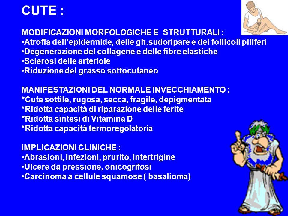 STOMACO : MODIFICAZIONI MORFOLOGICO-FUNZIONALI : Atrofia della mucosa Infiltrazioni leuco-linfocitarie Riduzione della secreazione cloro-peptica Motilità normale IMPLICAZIONI CLINICHE : Gastrite atrofica Ridotta digestione proteica, ridotto assorbimento di vitamina B-12