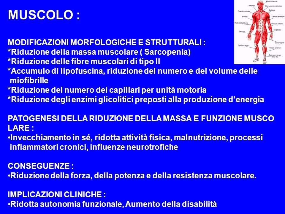 ORGANI DI SENSO OCCHIO MODIFICAZIONI MORFOLOGICHE E FUNZIONALI: Riduzione della lacrimazione Gerontoxon (arco senile) Aumento della pressione endo-oculare Ridotta elasticità e sclerosi nucleare del cristallino Alterata percezione cromatica Difficoltà di adattamento al buio Ridotta discriminazione visuo-spaziale IMLICAZIONI CLINICHE: Presbiopia Glaucoma: angolo chiuso (acuto), angolo aperto (cronico) Cataratta Degenerazione maculare