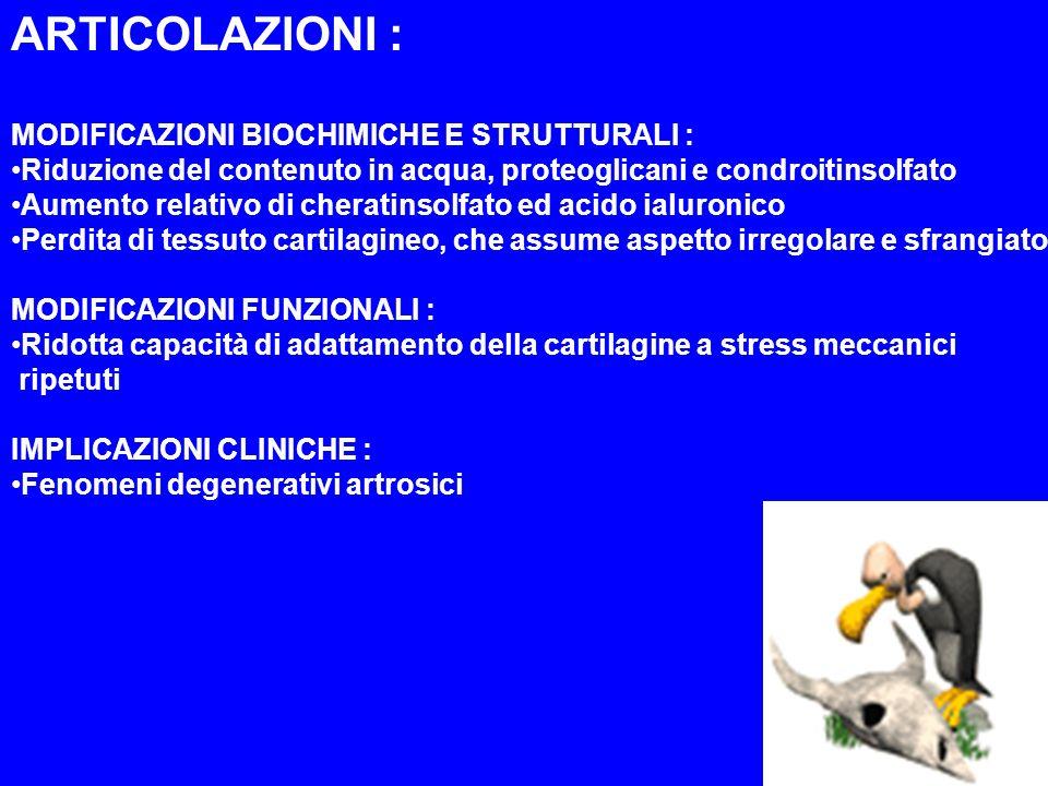 ARTICOLAZIONI : MODIFICAZIONI BIOCHIMICHE E STRUTTURALI : Riduzione del contenuto in acqua, proteoglicani e condroitinsolfato Aumento relativo di cher