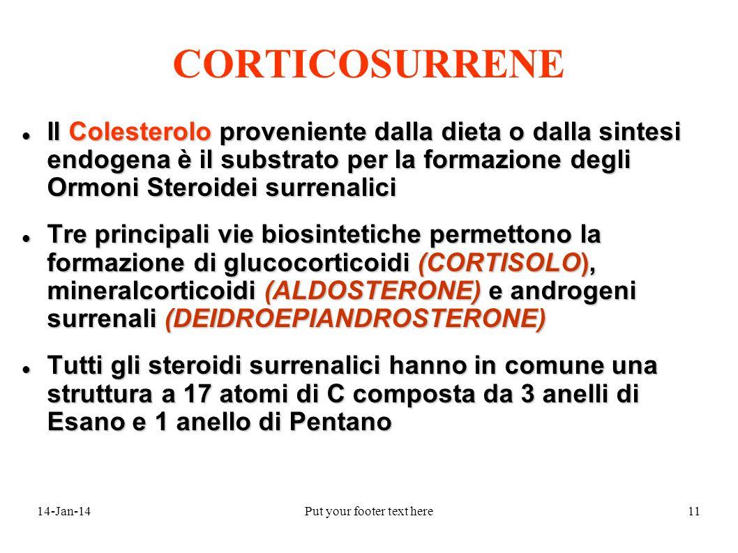 14-Jan-14Put your footer text here11 Il Colesterolo proveniente dalla dieta o dalla sintesi endogena è il substrato per la formazione degli Ormoni Steroidei surrenalici Il Colesterolo proveniente dalla dieta o dalla sintesi endogena è il substrato per la formazione degli Ormoni Steroidei surrenalici Tre principali vie biosintetiche permettono la formazione di glucocorticoidi (CORTISOLO), mineralcorticoidi (ALDOSTERONE) e androgeni surrenali (DEIDROEPIANDROSTERONE) Tre principali vie biosintetiche permettono la formazione di glucocorticoidi (CORTISOLO), mineralcorticoidi (ALDOSTERONE) e androgeni surrenali (DEIDROEPIANDROSTERONE) Tutti gli steroidi surrenalici hanno in comune una struttura a 17 atomi di C composta da 3 anelli di Esano e 1 anello di Pentano Tutti gli steroidi surrenalici hanno in comune una struttura a 17 atomi di C composta da 3 anelli di Esano e 1 anello di Pentano CORTICOSURRENE