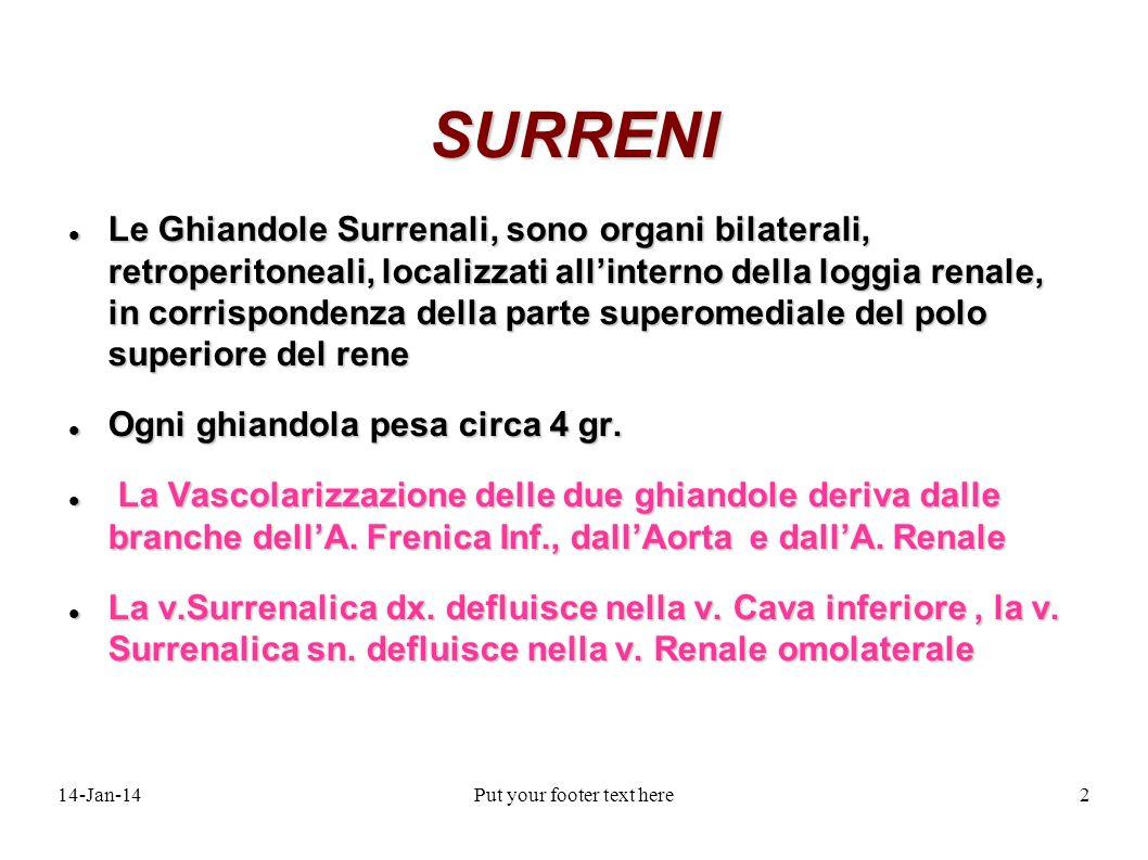 14-Jan-14Put your footer text here2 SURRENI Le Ghiandole Surrenali, sono organi bilaterali, retroperitoneali, localizzati allinterno della loggia rena