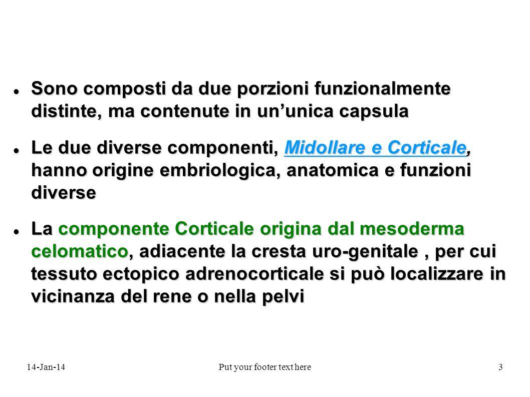 14-Jan-14Put your footer text here44 IPERALDOSTERONISMO PRIMITIVO NellIperaldosteronismo primitivo la malattia è deteminata da una iperproduzione surrenalica di aldosterone SOTTOTIPI DI IPERALDOSTERONISMO PRIMITIVO Adenoma surrenalico monolaterale 35-40% Adenoma surrenalico monolaterale 35-40% Iperplasia idiopatica bilaterale 55-60% Iperplasia idiopatica bilaterale 55-60% Iperplasia surrenalica primitiva 2% Iperplasia surrenalica primitiva 2% Carcinoma surrenalico aldosterone secernente < 1% Carcinoma surrenalico aldosterone secernente < 1% Iperaldosteronismo familiare Iperaldosteronismo familiare Ipersecrezione ectopica di aldosterone da adenoma o carcinoma < 0.1% Ipersecrezione ectopica di aldosterone da adenoma o carcinoma < 0.1%