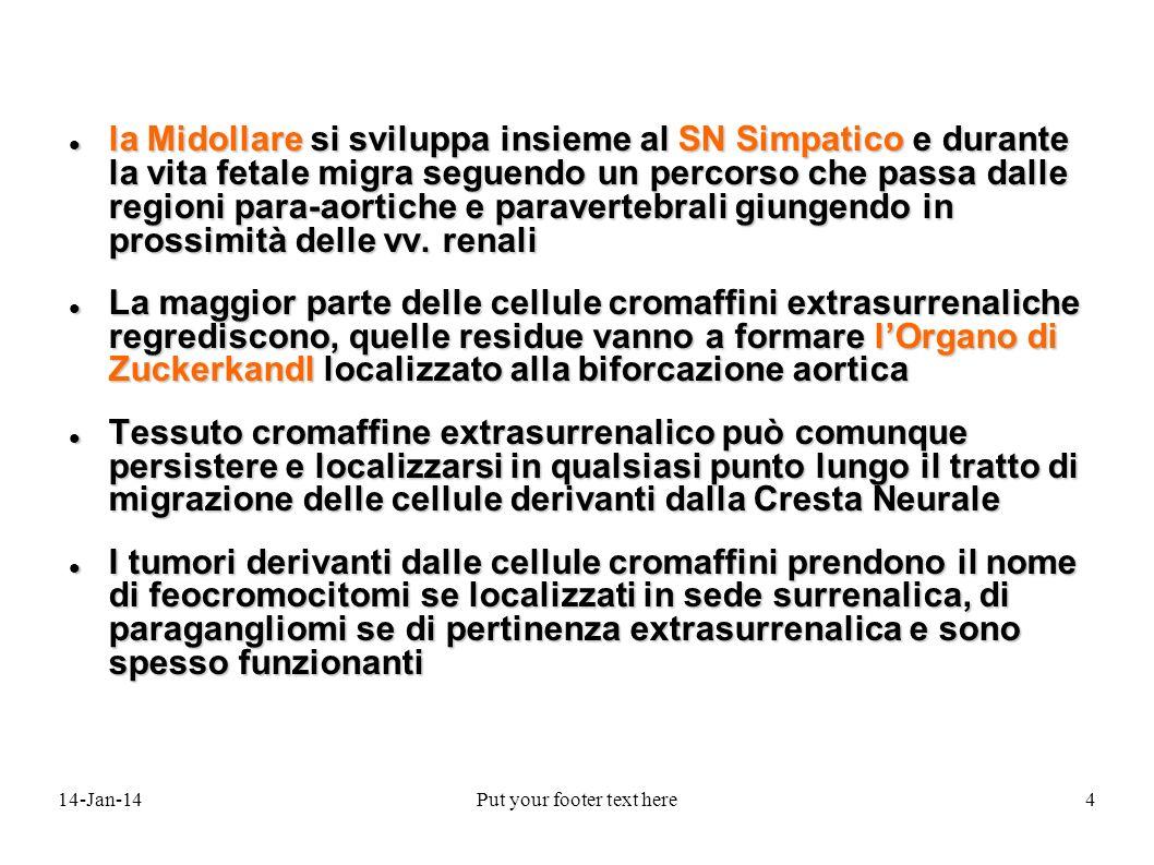 14-Jan-14Put your footer text here5 La CORTECCIA SURRENALICA delladulto è composta da tre zone distinguibili istologicamente e funzionalmente La CORTECCIA SURRENALICA delladulto è composta da tre zone distinguibili istologicamente e funzionalmente Glomerulare (esterna) Glomerulare (esterna) Fascicolata (media) Fascicolata (media) Reticolare (interna) Reticolare (interna)