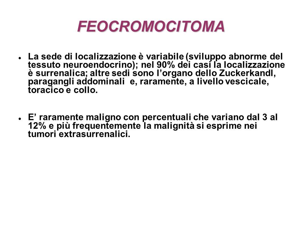 FEOCROMOCITOMA La sede di localizzazione è variabile (sviluppo abnorme del tessuto neuroendocrino); nel 90% dei casi la localizzazione è surrenalica; altre sedi sono lorgano dello Zuckerkandl, paragangli addominali e, raramente, a livello vescicale, toracico e collo.