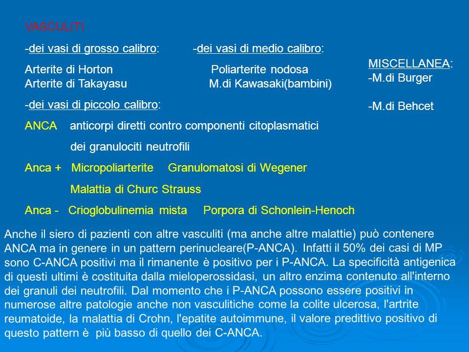 Anche il siero di pazienti con altre vasculiti (ma anche altre malattie) può contenere ANCA ma in genere in un pattern perinucleare(P-ANCA). Infatti i