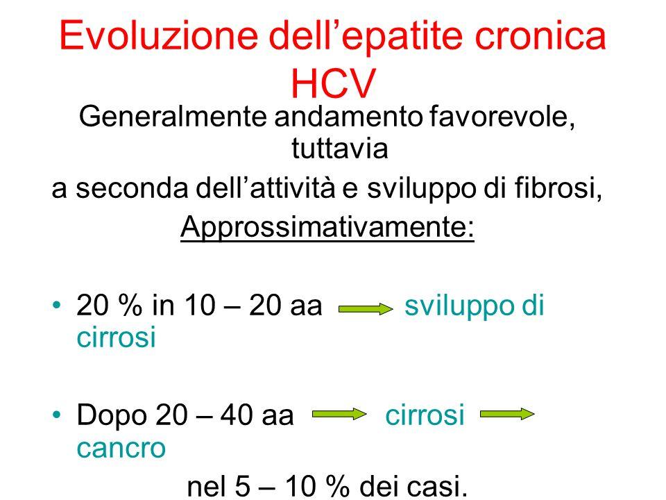 Evoluzione dellepatite cronica HCV Generalmente andamento favorevole, tuttavia a seconda dellattività e sviluppo di fibrosi, Approssimativamente: 20 %