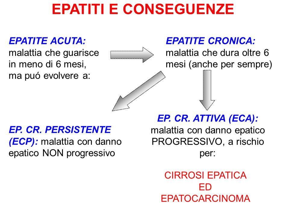 EPATITI E CONSEGUENZE EPATITE ACUTA: malattia che guarisce in meno di 6 mesi, ma puó evolvere a: EP. CR. PERSISTENTE (ECP): malattia con danno epatico