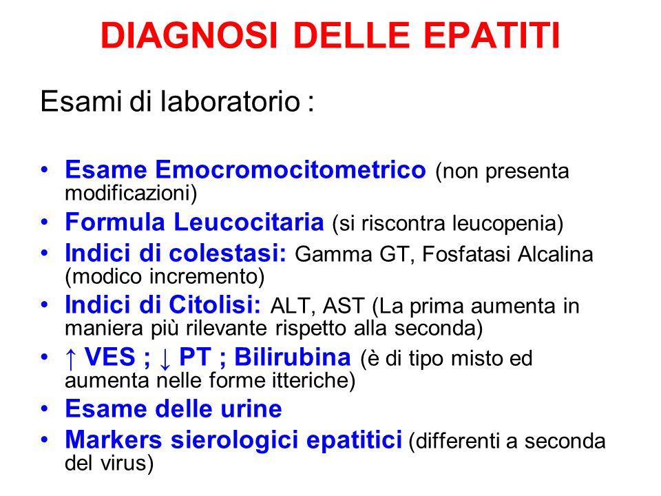 DIAGNOSI DELLE EPATITI Esami di laboratorio : Esame Emocromocitometrico (non presenta modificazioni) Formula Leucocitaria (si riscontra leucopenia) In