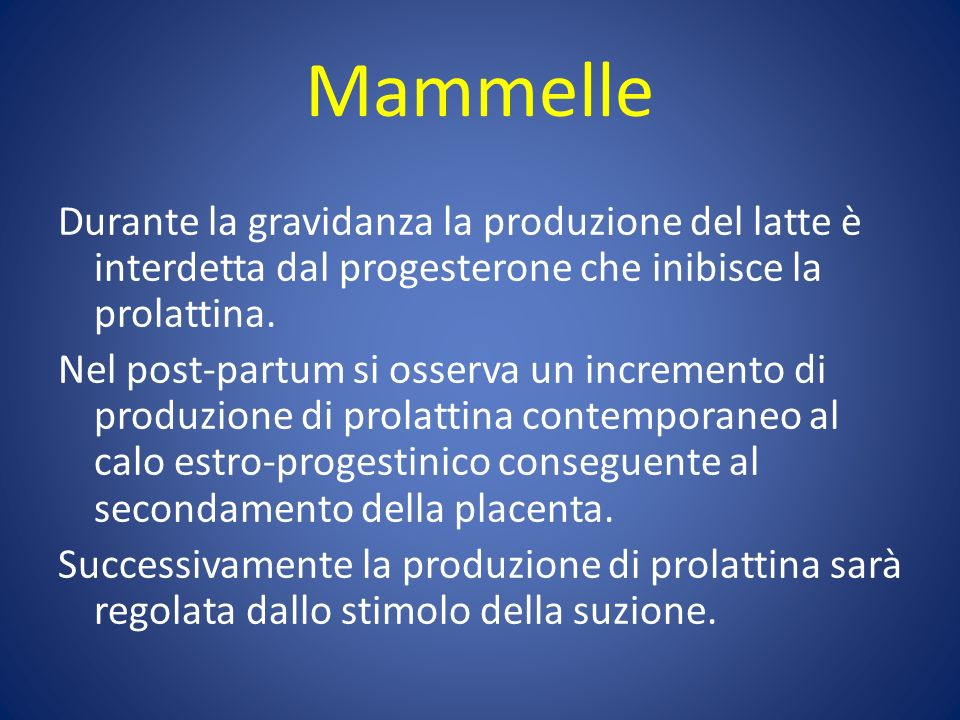 Mammelle Durante la gravidanza la produzione del latte è interdetta dal progesterone che inibisce la prolattina.