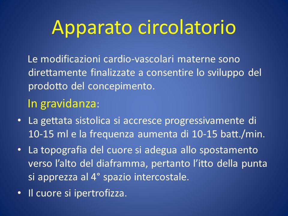 Apparato circolatorio Le modificazioni cardio-vascolari materne sono direttamente finalizzate a consentire lo sviluppo del prodotto del concepimento.